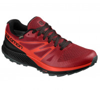 Salomon – Sense Escape GTX – Herren